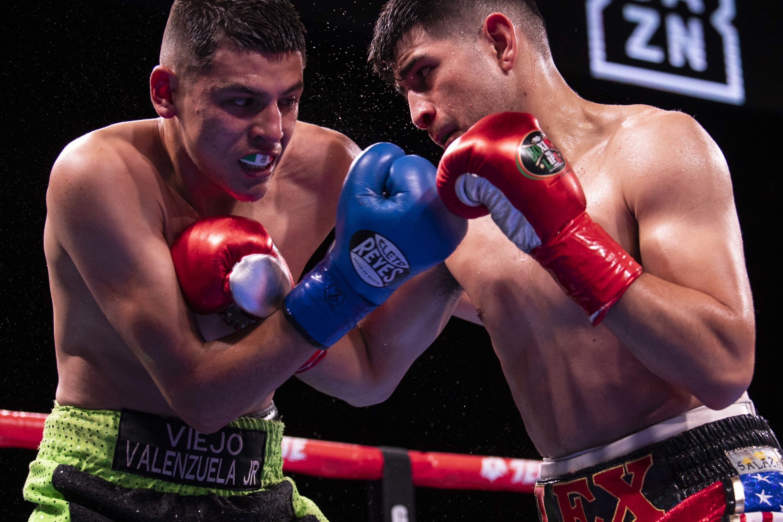 Alexis Rocha scored a fifth round stoppage win over Roberto Valenzuela. Photo: Lina Baker, SeeYouRingside Photography